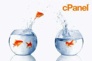 cpanel reseller hosting migration
