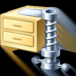 Gzip Compression for Faster SPanel Websites
