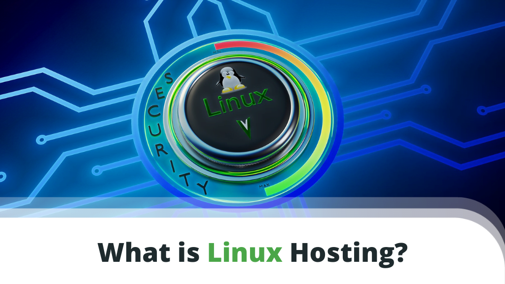 What is Linux VPS Hosting?