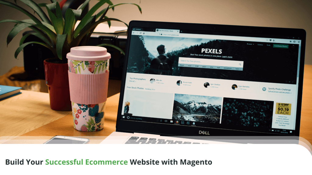Build Your Successful Ecommerce Website with Magento