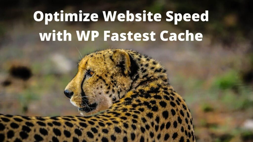 Optimize Website Speed with WP Fastest Cache